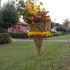 Gėlių fejerverkas