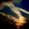 Saulėlydis nuo mano palangės - Atskrenda pūga