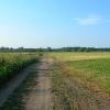 Kelias link Nemuno