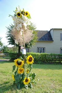 Gėlių fejerverkai