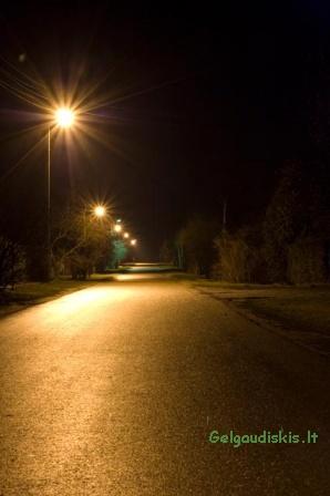 Kosmonautų gatvė