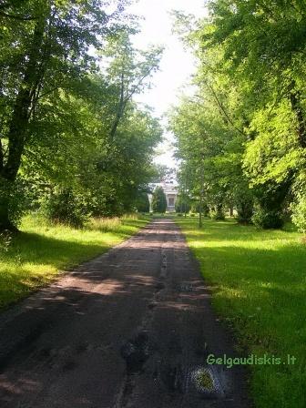 Kelias link dvaro